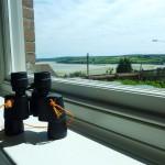 looking at the Cornish views