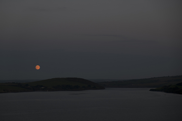 moonlight-camel-stolen-glimpses